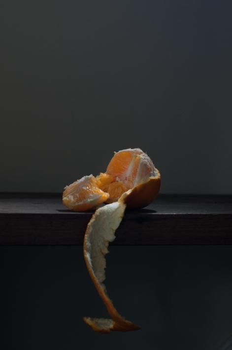 gabrielafineartphotograhy| still life-6